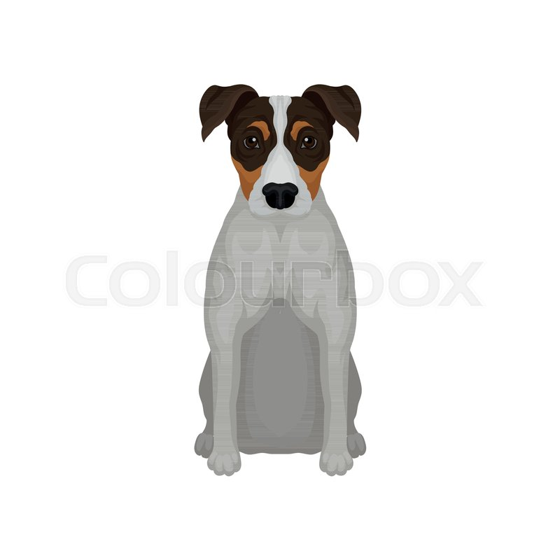 Colorful illustration of sitting jack     | Stock vector