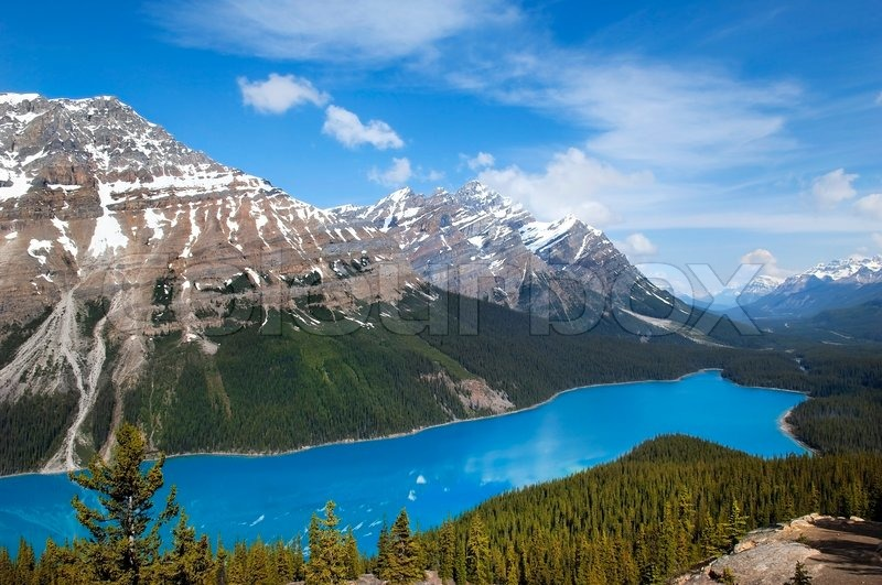What Are The Natural Resources Of Alberta