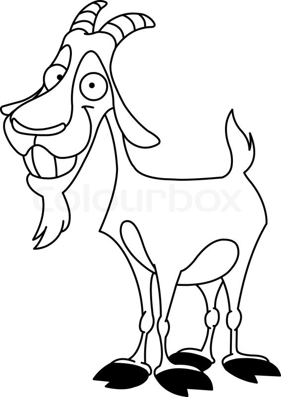 Outlined billy goat  Stock Vector  Colourbox