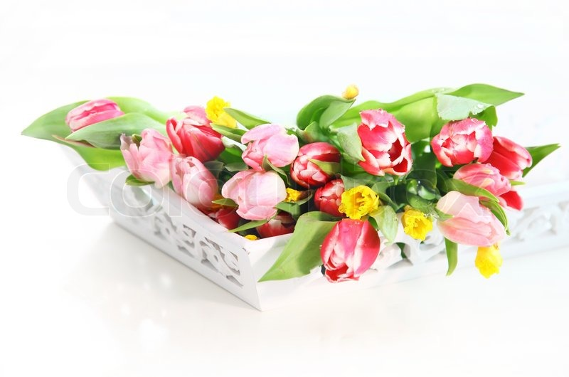 Home Appliance Schone Fruhlingsblumen Stockfoto Colourbox