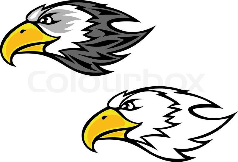 how to draw a cartoon hawk flying