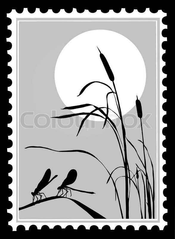 silhouette dragonfly on postage stamps stock vector colourbox