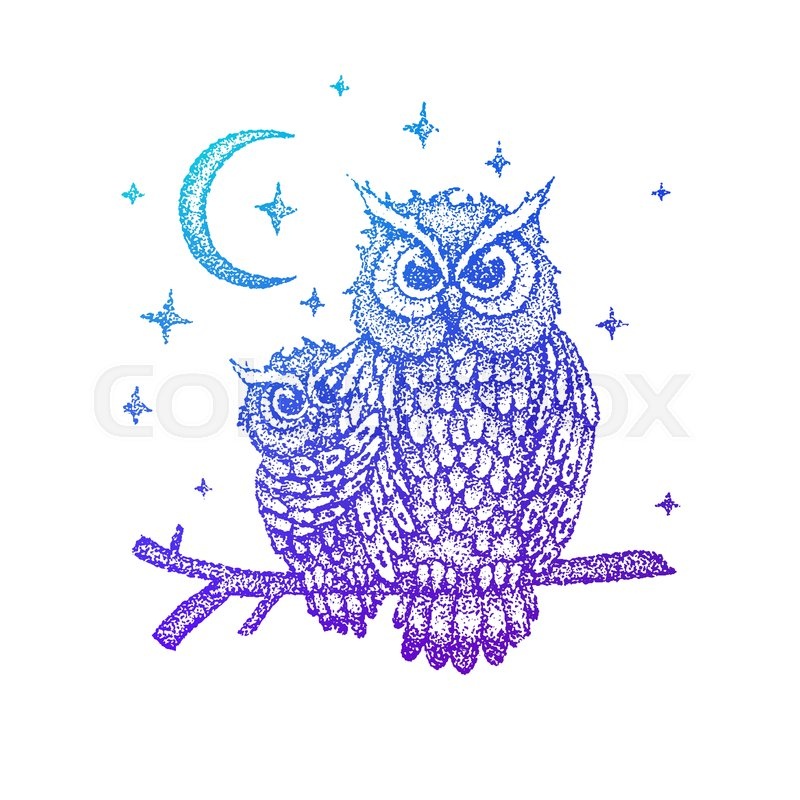 9a5ffe805 Night Owls Colorful Sketch. Vector ... | Stock vector | Colourbox