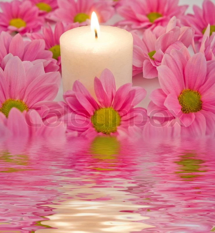 Candle and pink flower in a water | Stock Photo | Colourbox