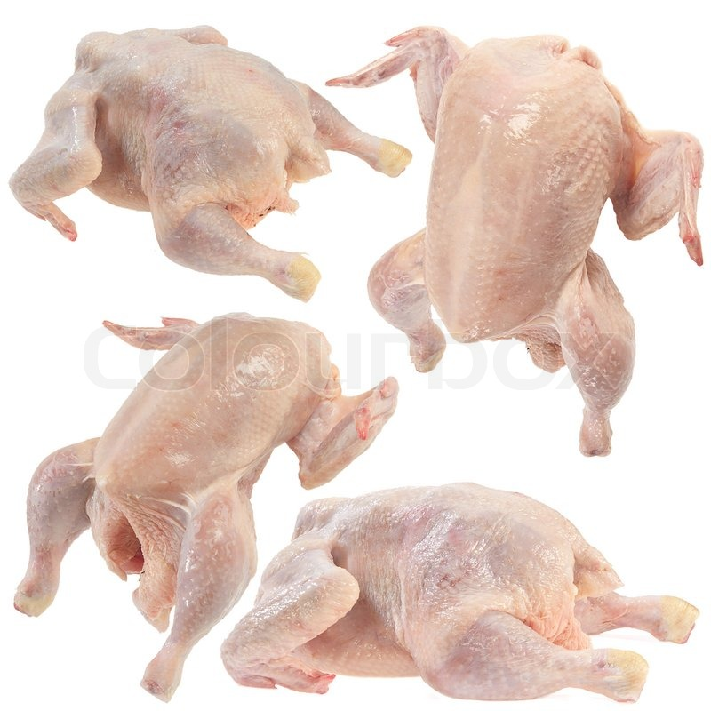 set of raw chicken on a white background stock photo colourbox