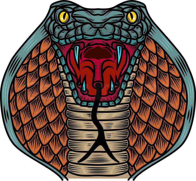 Cool Looking Cobra Snake Head Illustration Art