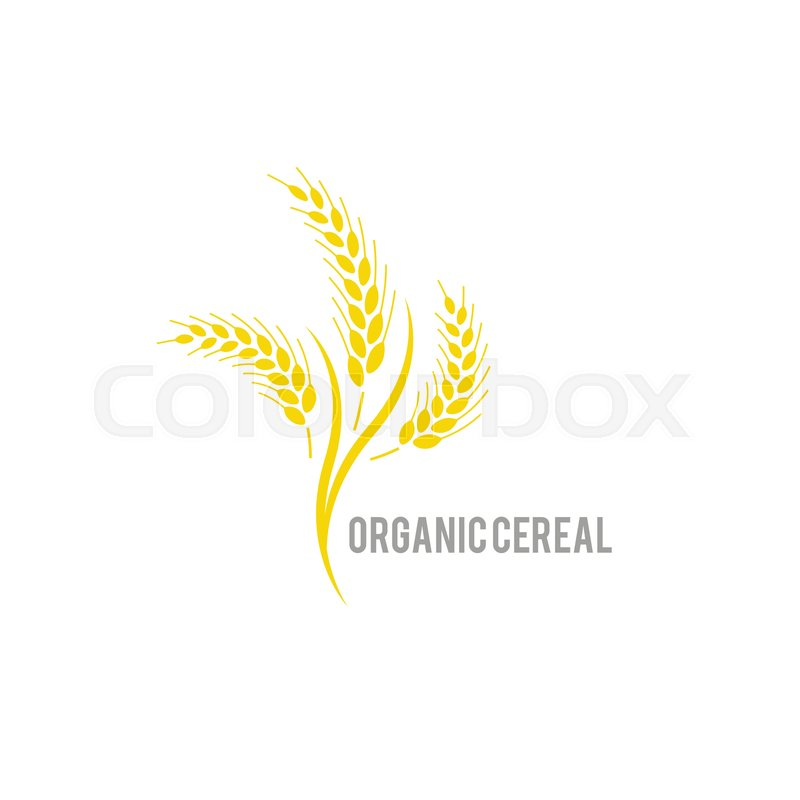 Organic , agriculture seed, plant and     | Stock vector | Colourbox