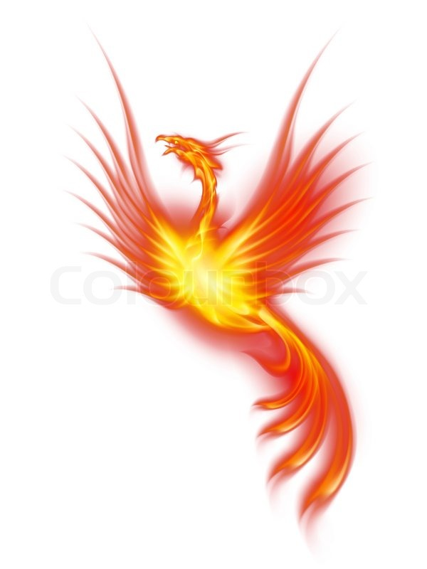 burning phoenix stock photo colourbox