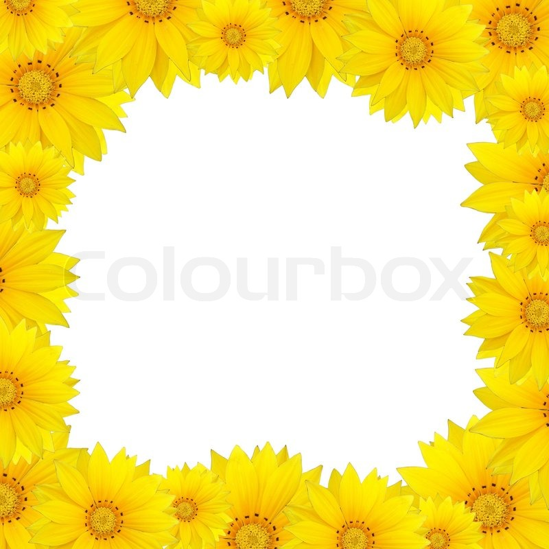 Flowers frame with yellow sunflower isolated on white background ...