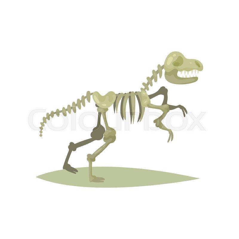Icon of dinosaur skeleton      | Stock vector | Colourbox