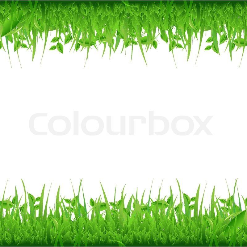 clip art grass border - photo #41
