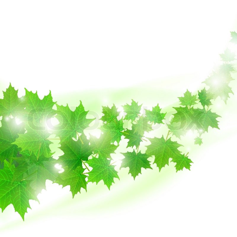 light green leaves background - photo #14