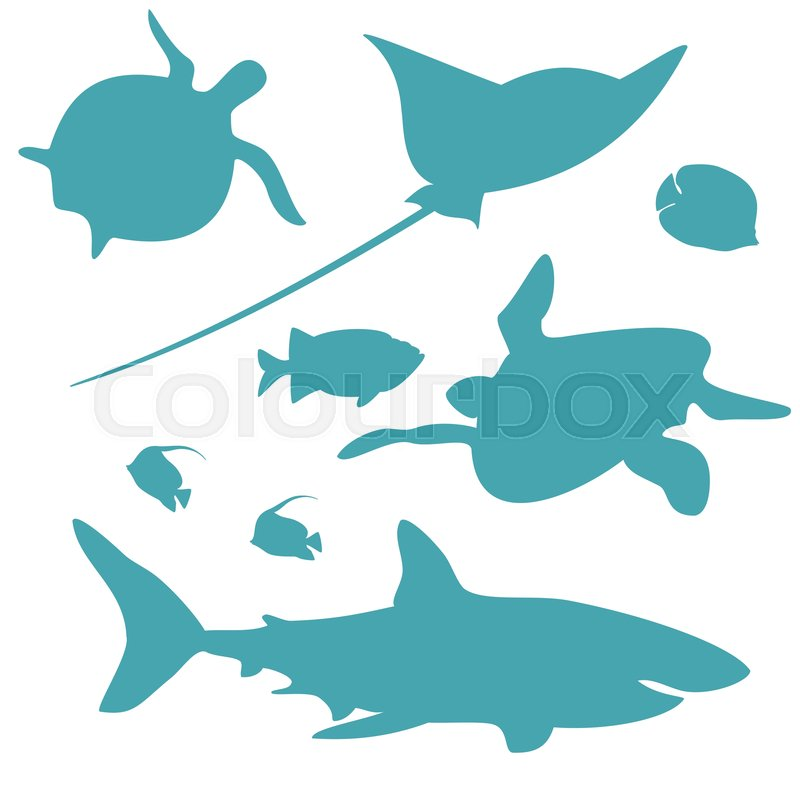 Clipart. Shells, Fish, Deep-sea Animals Of The Sea And Ocean.. Royalty Free  Cliparts, Vectors, And Stock Illustration. Image 92483679.