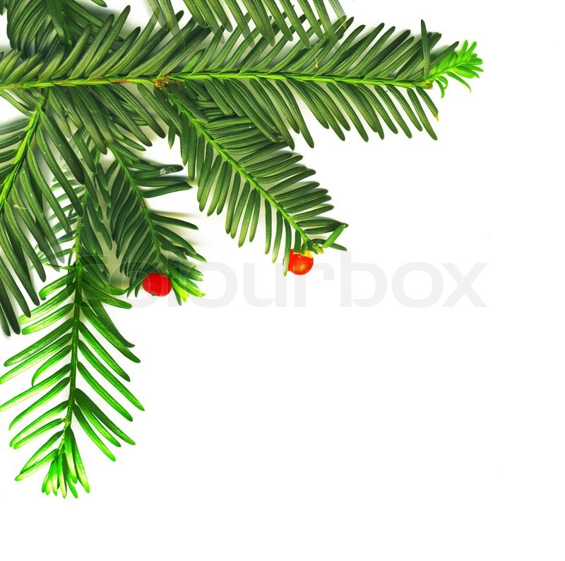Christmas Traditional Decoration In The Corner, Stock Photo