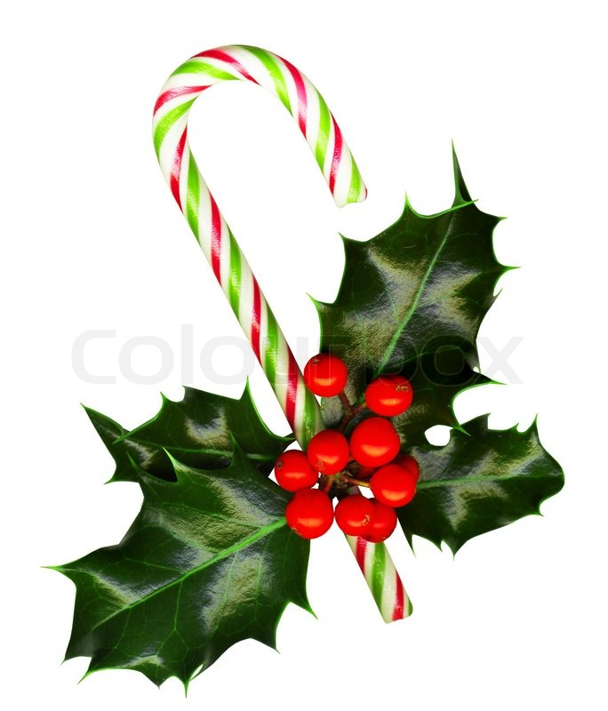 Clipping Path Candy Cane With Pretty Holly Leaves And