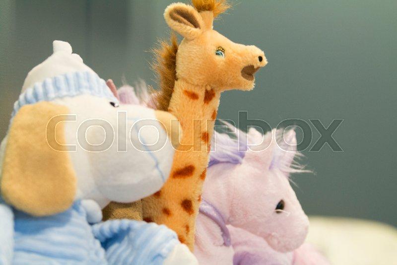 Stuffed toy animals, stock photo