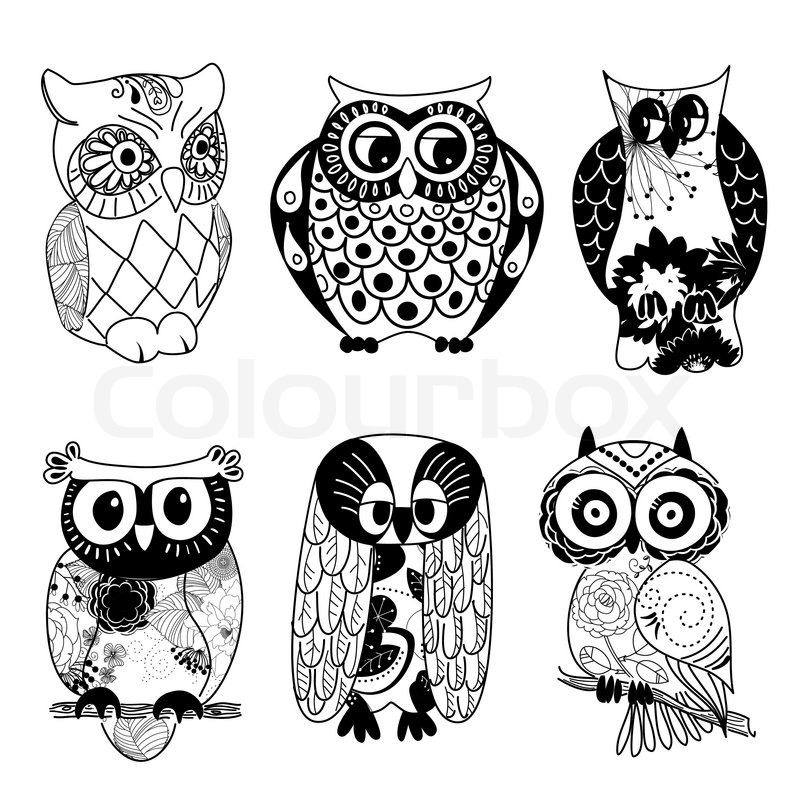 Collection of six different owls stock vector colourbox