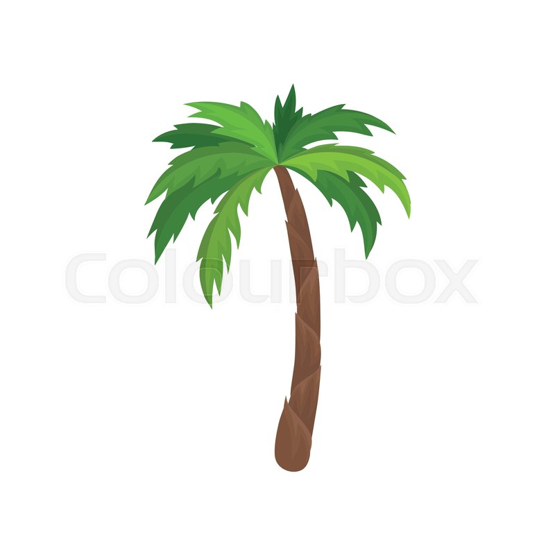 Palm tree with bright green leaves      | Stock vector | Colourbox