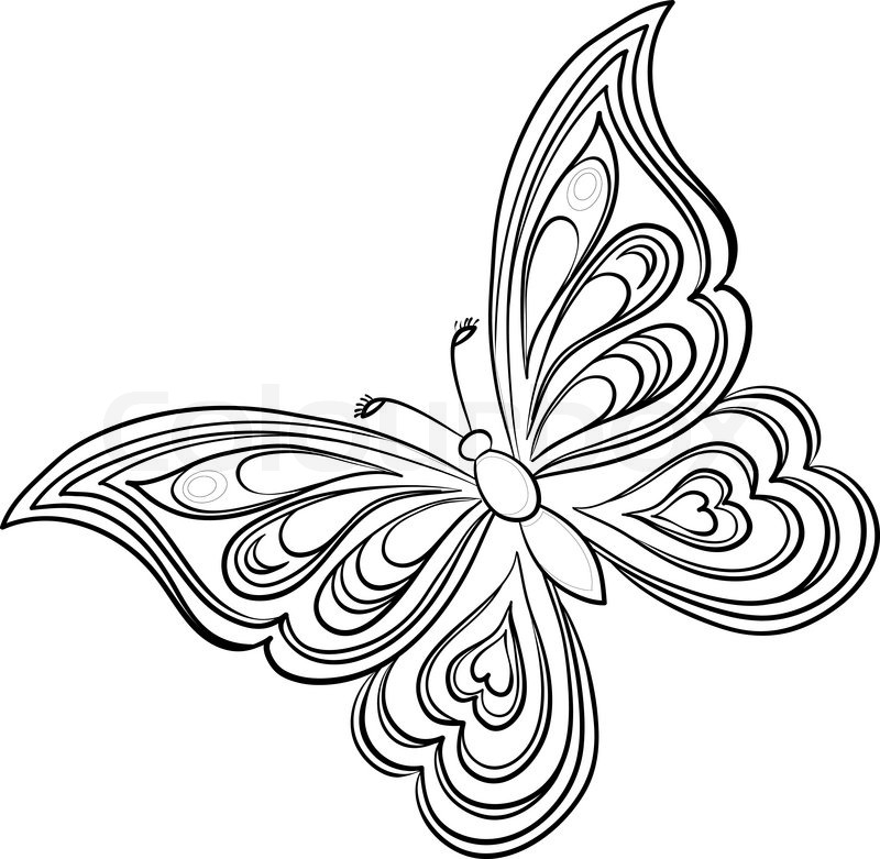 Contour Line Drawing Butterfly : Butterfly contours stock vector colourbox