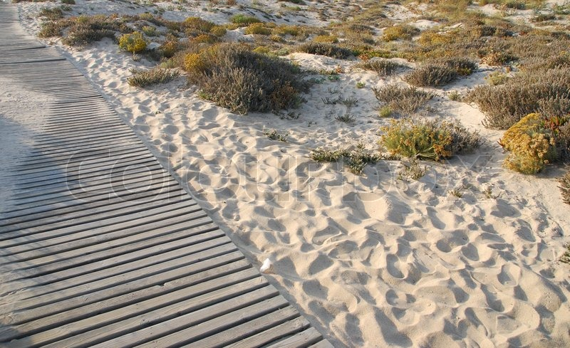 Stock image of 'Wooden walkway to beach'