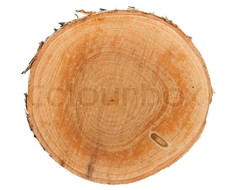 Tree Stump Top View Stock Photo Colourbox