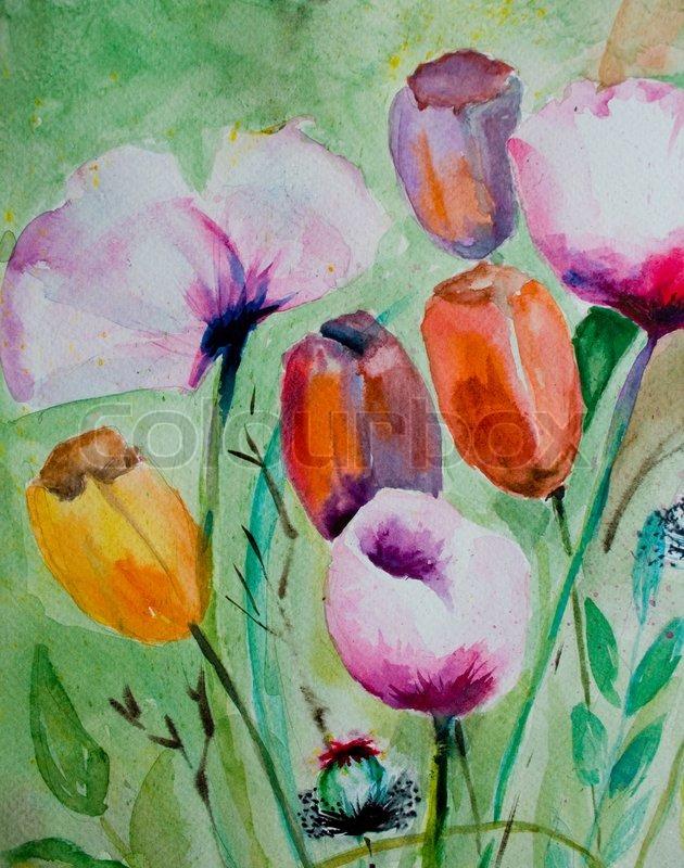 Aquarell Tulpen Mit Mohnblumen Stockfoto Colourbox