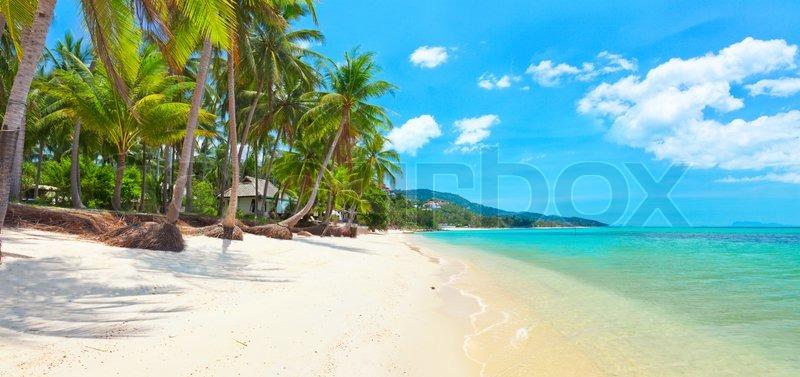 Tropical Beach Bang Po  Koh Samui  Thailand Panorama