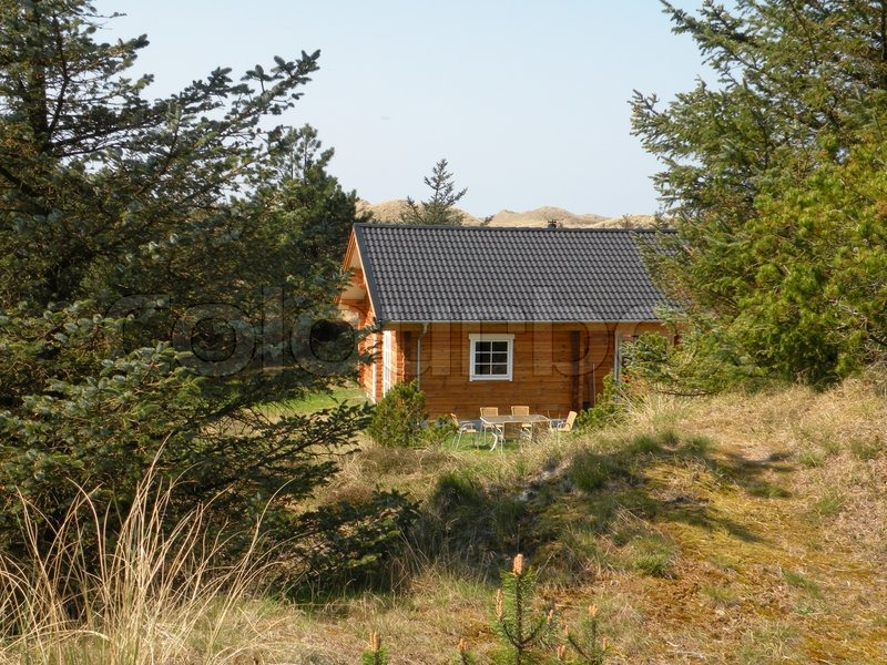 Lonely wood summer house in rural dune landscape with trees in thy national park jutland - The jutland small house ...