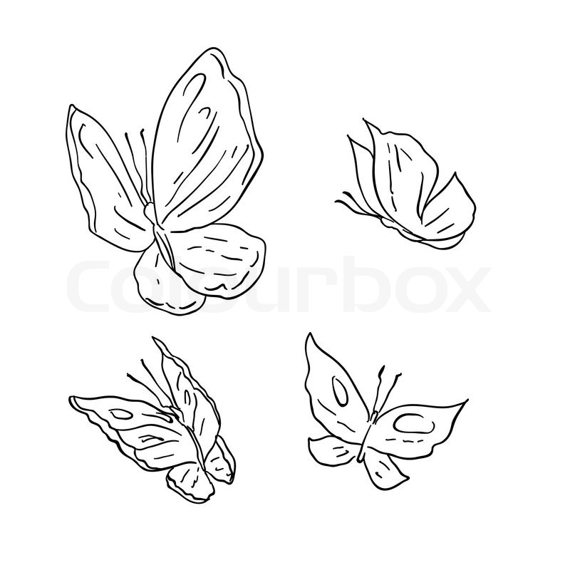 quot drawing abstract butterfly  quot  stock vector colourbox clipart of butterfly side view clipart of butterfly with eyes
