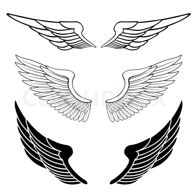 D Line Drawings Logo : Sæt vinger isoleret på hvidt stock vektor colourbox