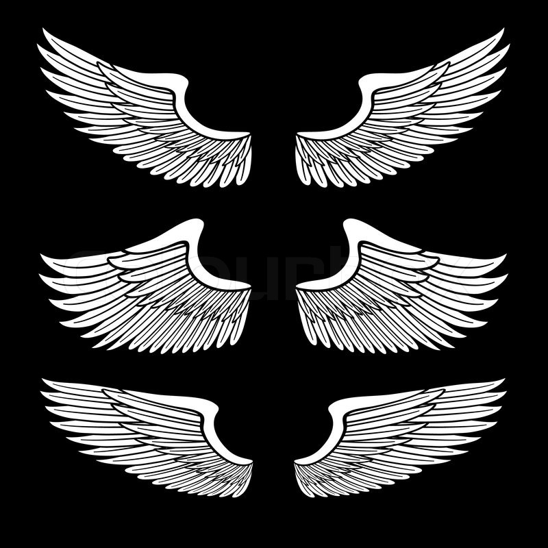 Black White Angel Wings