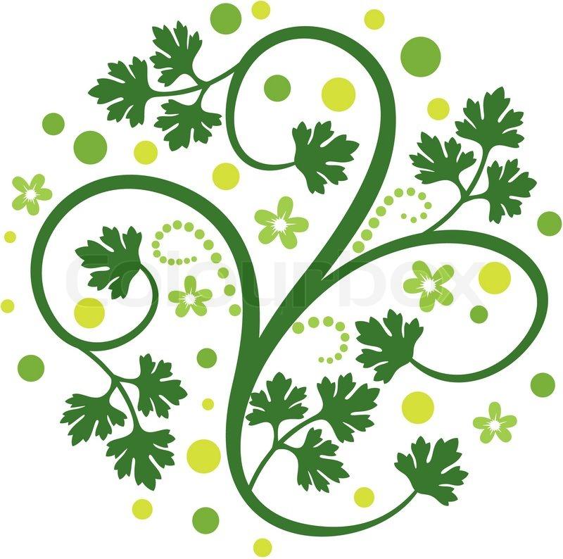 Floral Decoration floral decoration | stock vector | colourbox