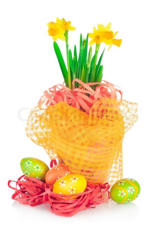 Ostereier und im fr hjahr gelbe narzisse narzisse im for Blumentopf dekoration