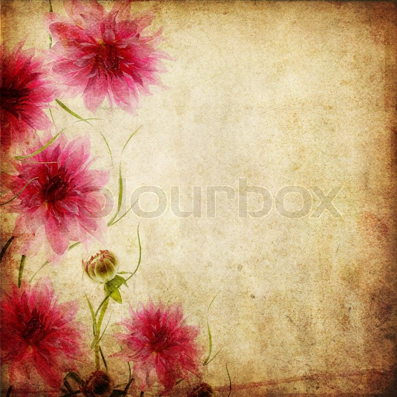 Old paper background with flowers | Stock Photo | Colourbox