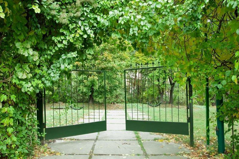 Iron Gate In A Beautiful Green Garden Stock Photo