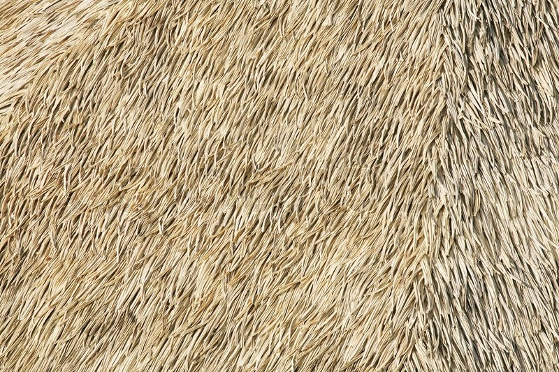 Thatch Background Stock Photo Colourbox