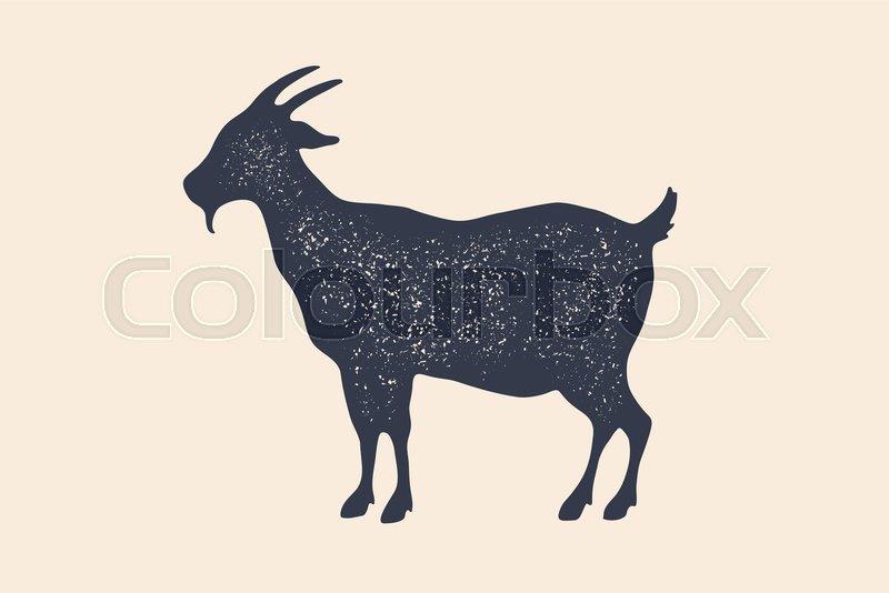 Goat  Vintage logo, retro print,     | Stock vector | Colourbox