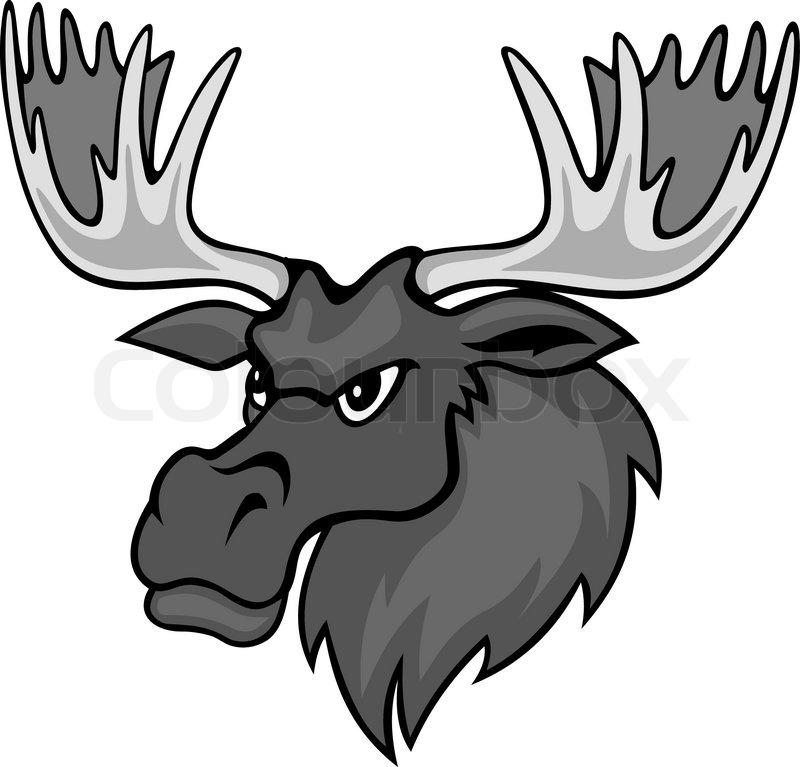 Moose face cartoon - photo#8