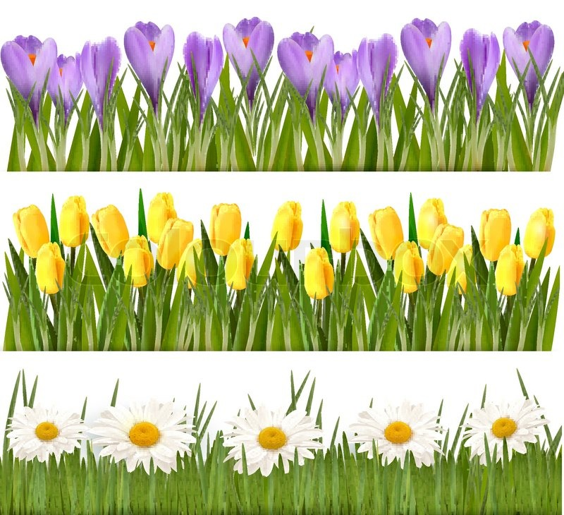 Fresh spring and flower borders vector stock vector colourbox mightylinksfo