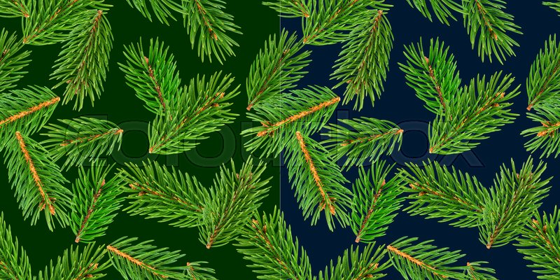 Fir tree branches seamless pattern, pine branch, Christmas conifer isolated on green background, New Year winter pattern, stock photo