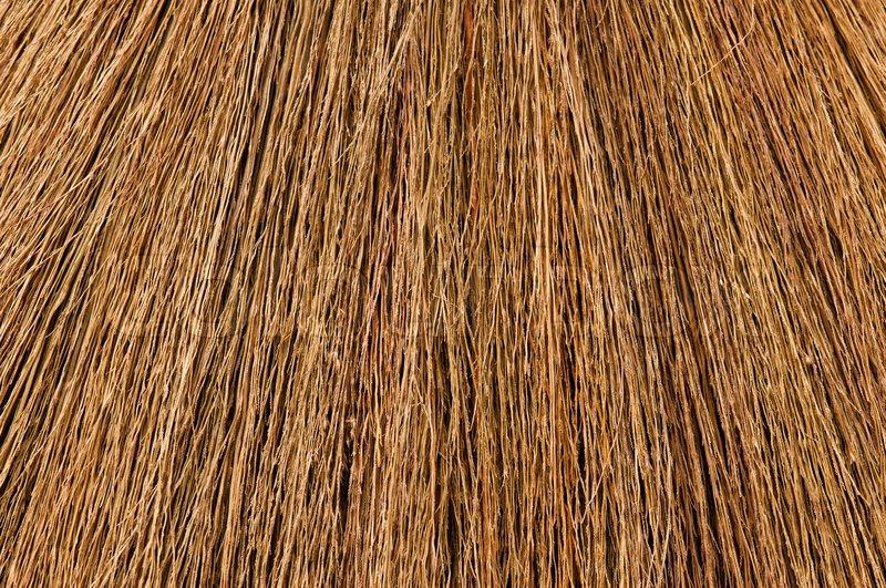 Broom Texture Stock Photo Colourbox