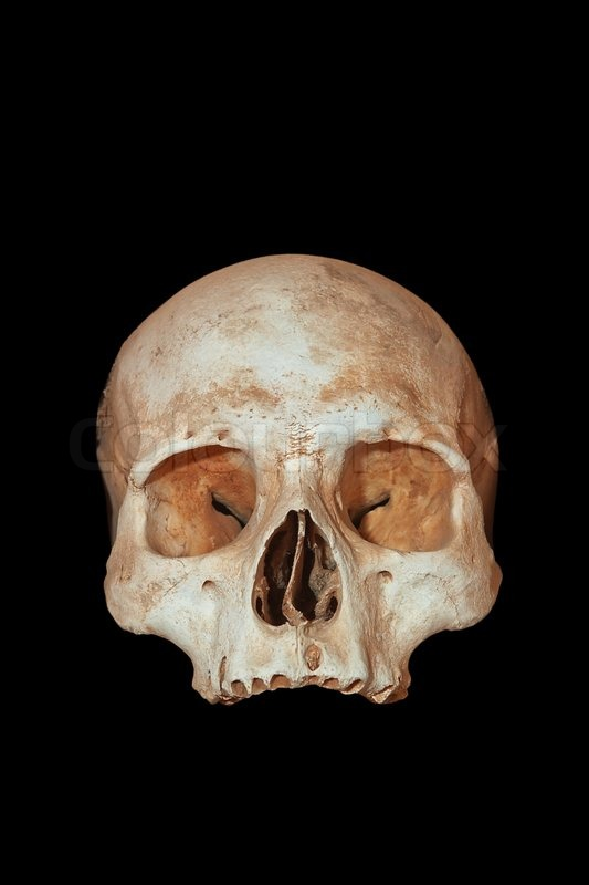 A human skull on a black background stock photo colourbox ccuart Images