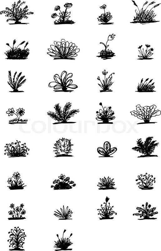 Front Elevation Autocad 2d : Sketch of plants for your design stock vector colourbox