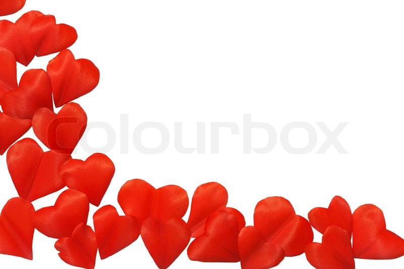 Petals in heart shape over white background - frame. Clipping path ...