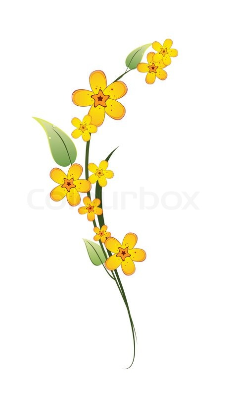 Yellow flower on a stem with green leaves on white background yellow flower on a stem with green leaves on white background stock vector colourbox mightylinksfo