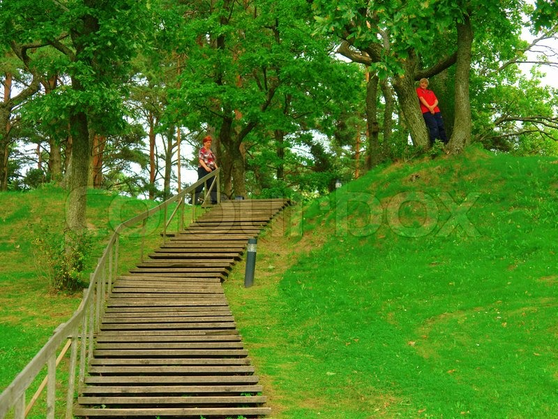 Wood stairs in a park, stock photo