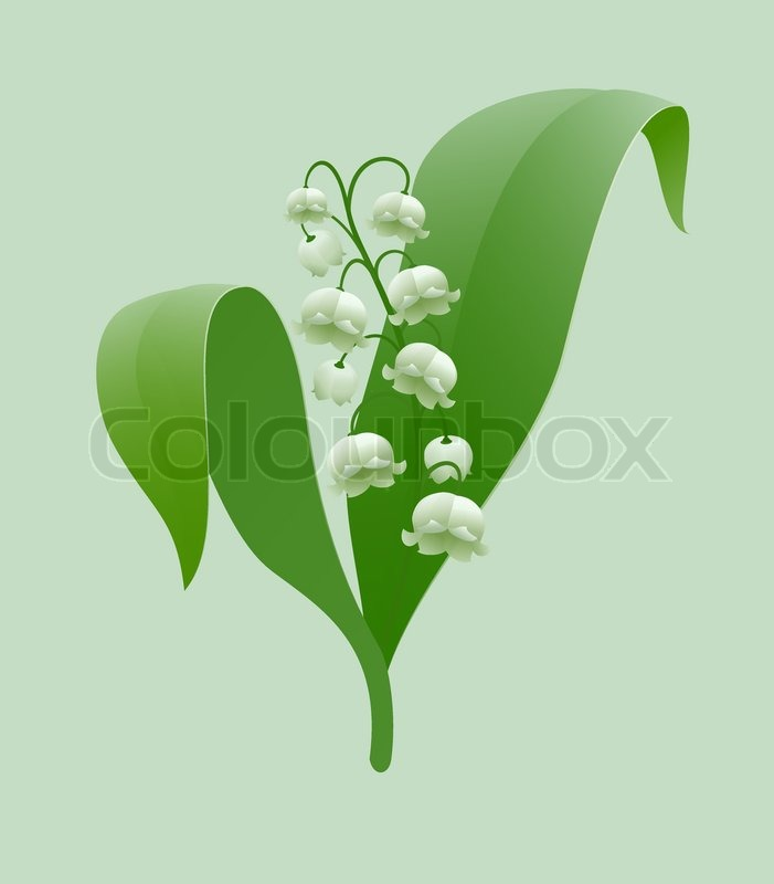 Nature background with blossoming sakura branch royalty free stock - Lily Of The Valley Stock Vector