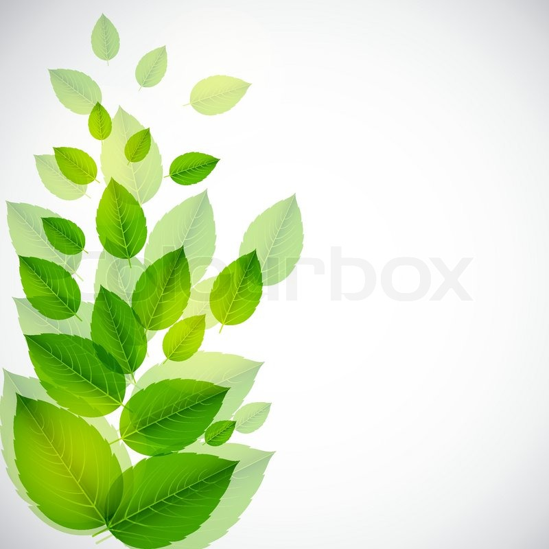 abstract nature background with leaves vector iilustration stock
