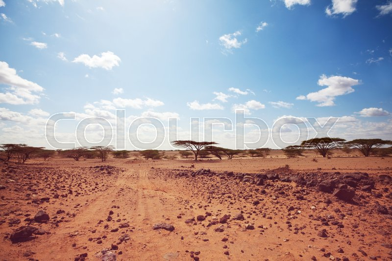 Safari and extreme travel in Africa. Drought mountain landscape with dust off road in offroad car expedition, stock photo