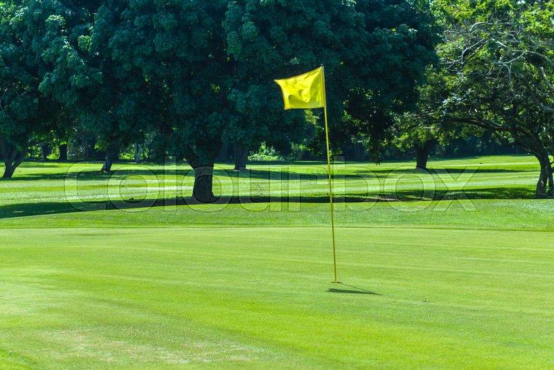 Golf course hole green flagstick trees scenic summer coastal course, stock photo